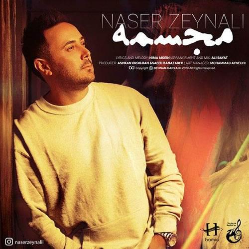 دانلود آهنگ عشقو دادی یاد این دیوونه ناصر زینعلی (مجسمه) Mp / وفا موزیک